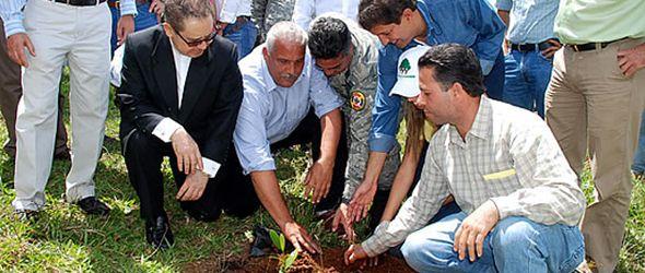 medio-ambiente-plan-reforestacion