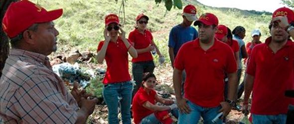 reforestacion-jrsc