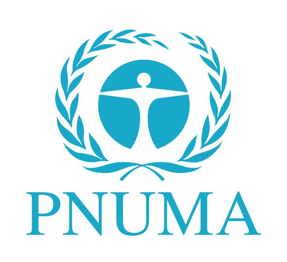 pnuma-logo