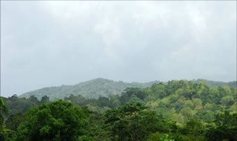 Parque Nacional Aniana Vargas
