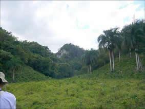 Naturaleza en el Parque Nacional Aniana Vargas