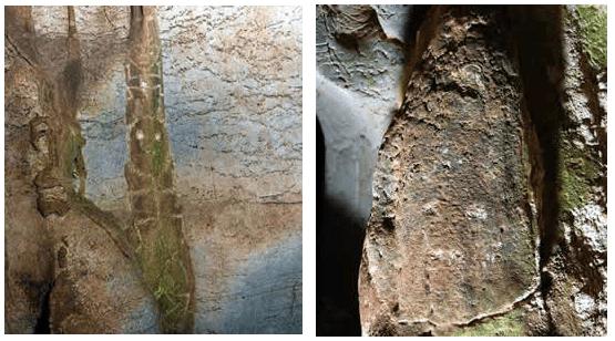 Petroglifos de la guacara de Papo
