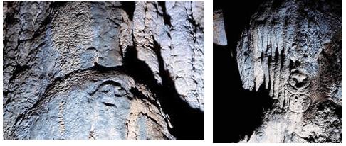 Petroglifos de la guacara de Los Cacaos