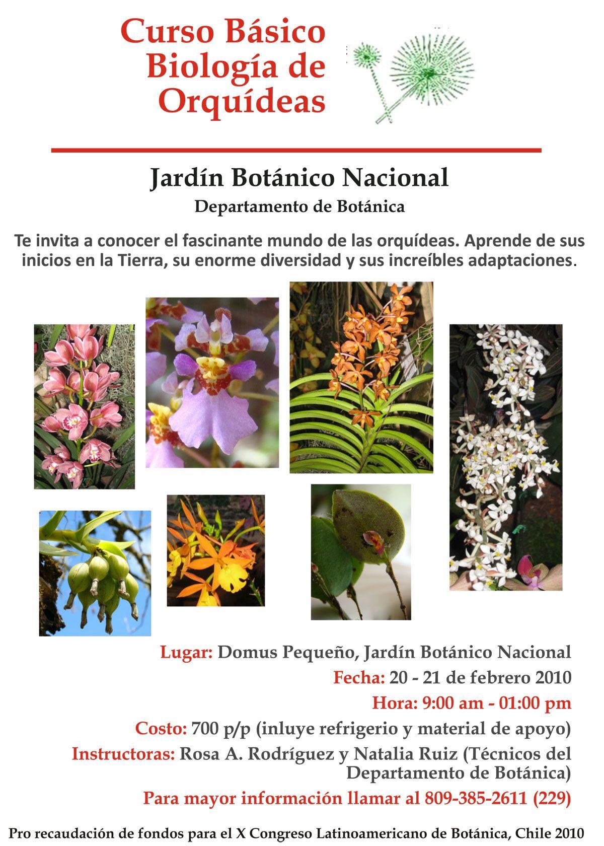 Curso de biología básica de Orquídeas