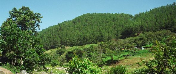 jarabacoa-ecoturismo