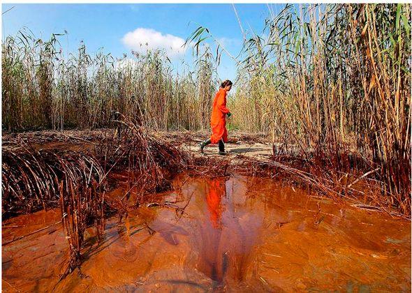 Vertido petróleo llega al delta del Misisipi
