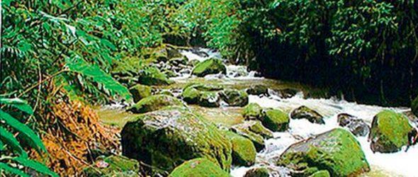 Río Limpio es manantial de belleza dentro de Elías Piña