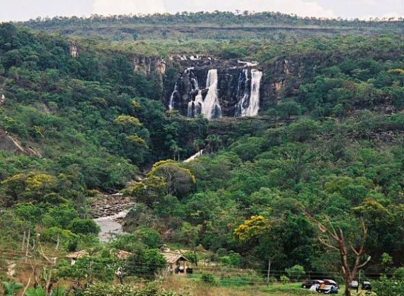 bosques-tropicales-del-congo-y-gabon