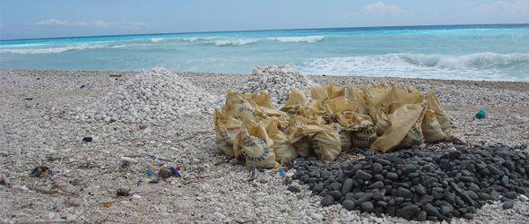 Destruccion ecologica en Paraiso Barahona