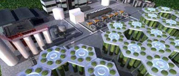 Producir biocombustible de algas podría ser rentable en 15 años