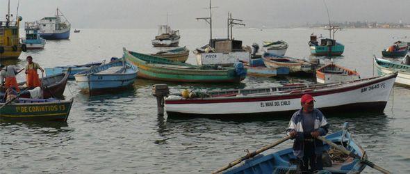 Libre comercio arrasa pesca artesanal en India