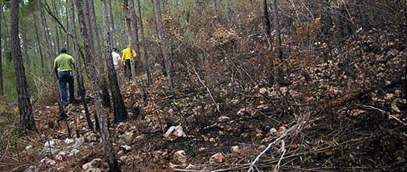 Ministerio Ambiente capacita en prevención y control de incendios forestales