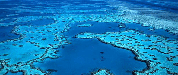 Shell en centro de una polémica por explorar gas cerca del coral en Australia