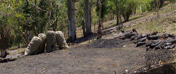 MTB Dominicana denuncia deforestación en El Higuero
