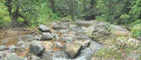 Recursos naturales y degradación del ambiente