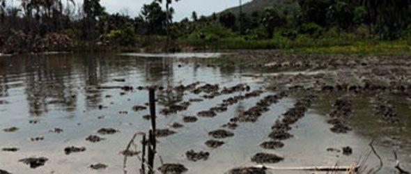 Piden evacuar área Lago Enriquillo