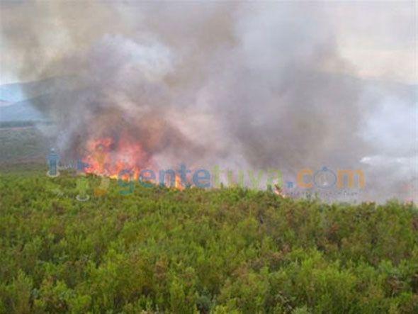 Voraz incendio destruye 2 mil tareas de palma en Hato Mayor