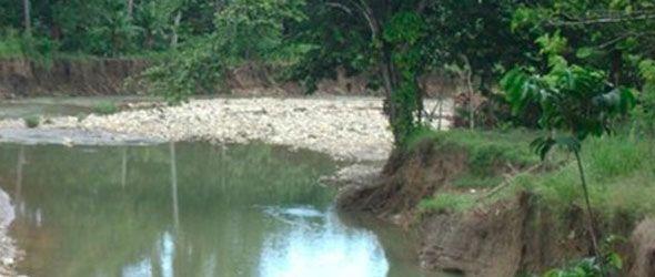 Tratan de salvar el río Camú