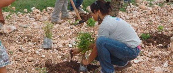 Khoury Industrial y estudiantes realizan jornada de reforestación en Cabral