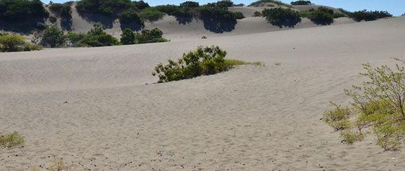 dunas-bani-destino-verde