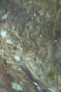Fig. No. 6 Guabancex o deidad desconocida