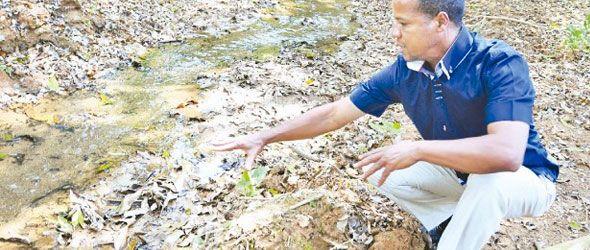 ambientalista-pablo-andino-rio-sonador