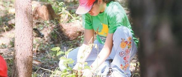 jornada-reforestacion-nigua