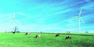 agricultores6dic13