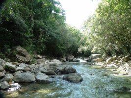 comision_loma_miranda_parque_nacional_14