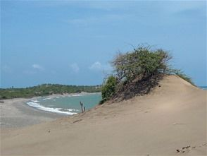 desierto_caribe_0