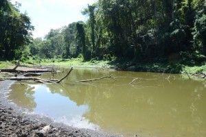 HATILLO PALMA, Guayubín.-  La tala sin ningún tipo de control y la quema indiscriminada, de  arboles  está causando estragos en las fuentes de agua que permiten el abastecimiento de cientos de familias de las zonas baja de la Cordillera Septentrional, específicamente en la zona de Guayubín.Laguna de Loma de Solim+ín, en la Cordillera Septentrional, Hoy/Cortesia Rafael Pujols.1/10/14