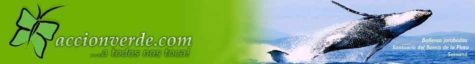 Accion Verde – El Portal Ambiental de la Republica Dominicana
