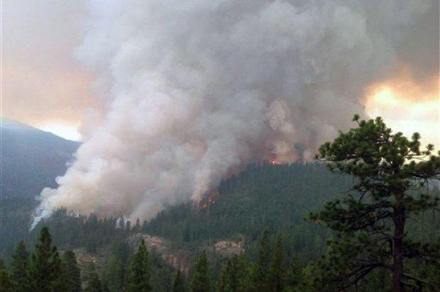 Alertan sobre posibles incendios forestales por altas temperaturas