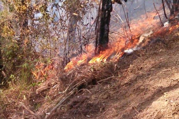 Incendios afectan varias comunidades de la provincia Dajabón