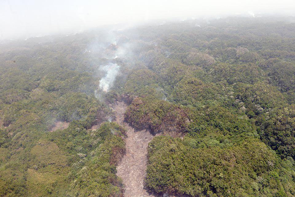 Ministerios de Medio Ambiente y Defensa ocuparán zonas Los Haitises por quema de terrenos para actividades agrícolas