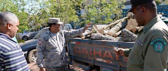Medio Ambiente apresa a varias personas por corte ilegal de árboles