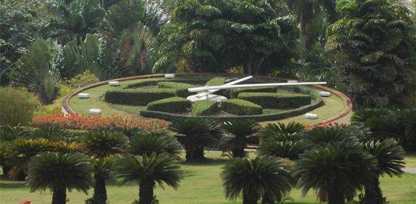 Consultorio Ecológico. En el Jardín Botánico se está utilizando para prácticas pelota