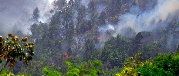 Loma Miranda arde; ecologista dice fueron manos criminales
