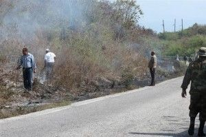 Brigadas tratan de extinguir incendio forestal en la loma El Curro