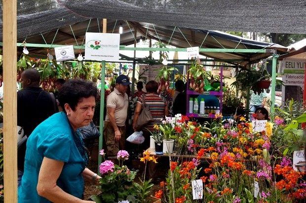 """Jarabacoa se """"viste"""" de jardín durante el Festival de las Flores"""