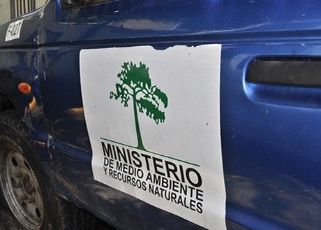 Medio Ambiente notifica a propietarios de planes de manejo forestales para que rotulen camiones que transportan madera