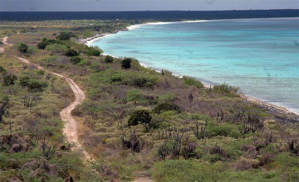 Tribunal declara nulos deslindes de parcelas localizadas en Parque Nacional Jaragua