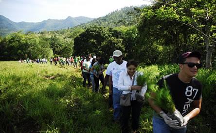 Medio Ambiente prioriza más de 19 mil tareas de cuencas para plantar parte de los 2 millones de árboles este mismo año