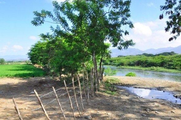 Hacendados ocupan áreas del río Yaque