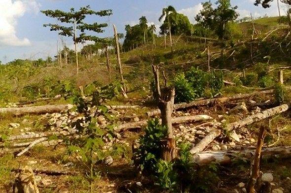 Desmontes y contaminación vertedero en Jamao al Norte
