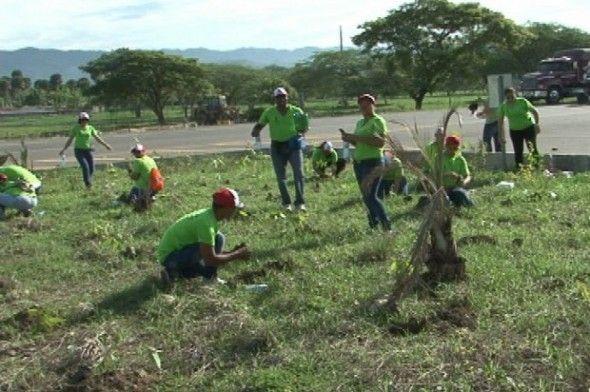 Siembran más de 25 mil árboles en Santiago
