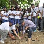 Medio Ambiente conmemora el Día del Árbol con distintas actividades